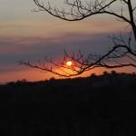 Kruger National Park: sunset