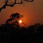 Kruger National Park: sunrise