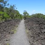 L'île Rangitoto et son champ de lave