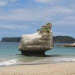 Péninsule de Coromandel: Cathedral Cove