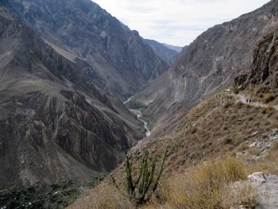 Pérou: le Cañon de Colca